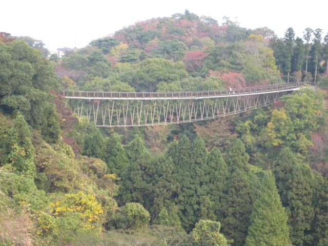 いわき中央公園_11.JPG