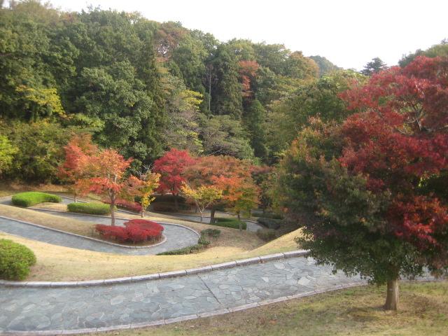 いわき中央公園_6.JPG
